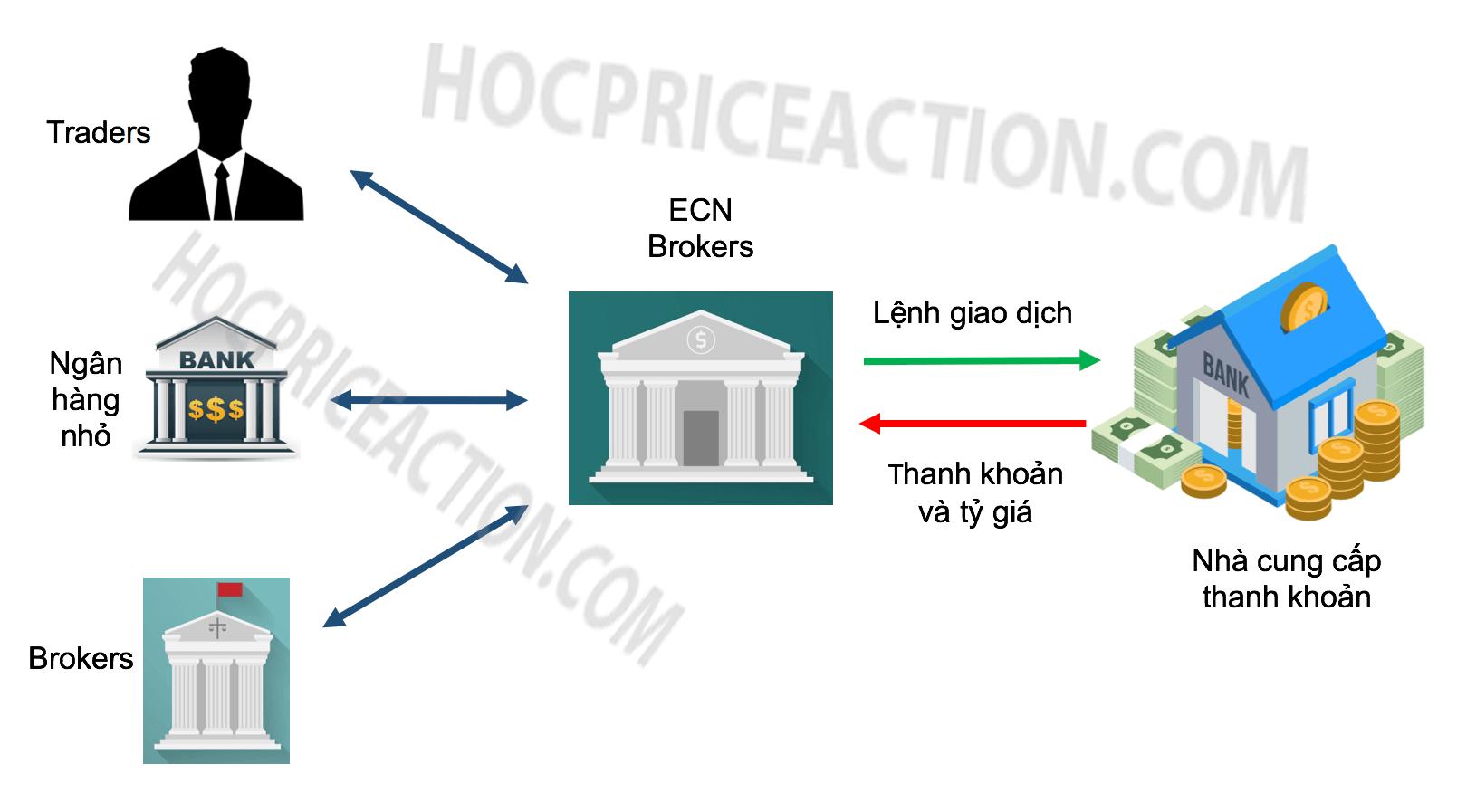 ECN là gì? Tại sao nên giao dịch chuẩn ECN?